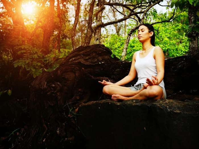 Meditate on a hill in the forests at Gethia Nainital