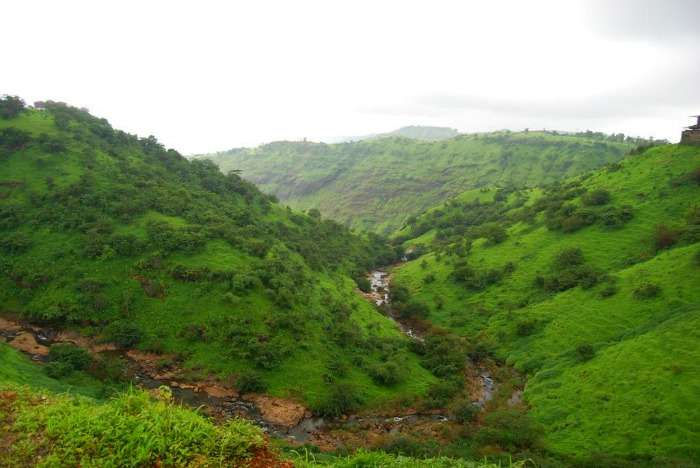 Camel Valley in Igatpuri