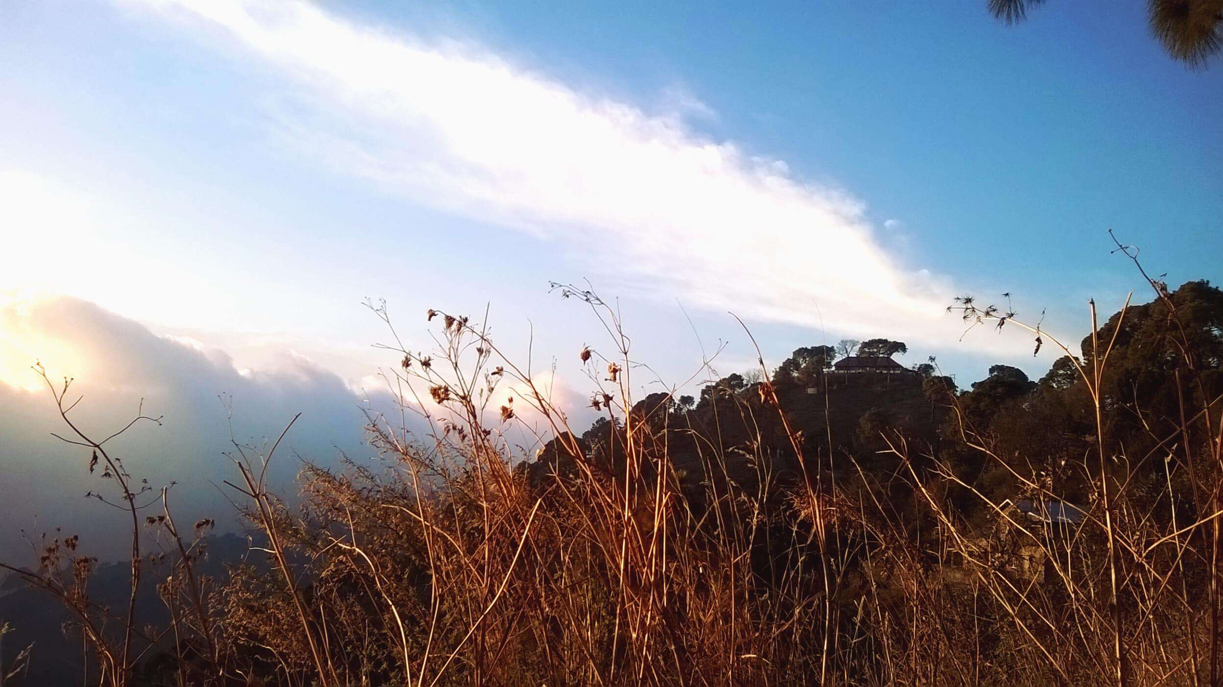 hills of Kasauli