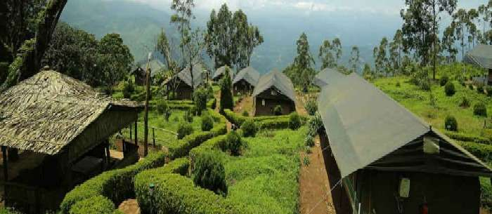 Tree House Munnar in the Jungle Resorts in Kerala