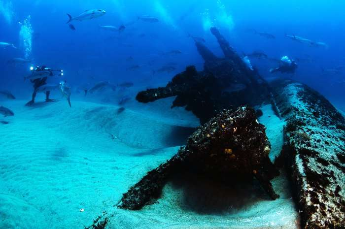 Shipwreck in North Carolina is one the best diving sites in the world