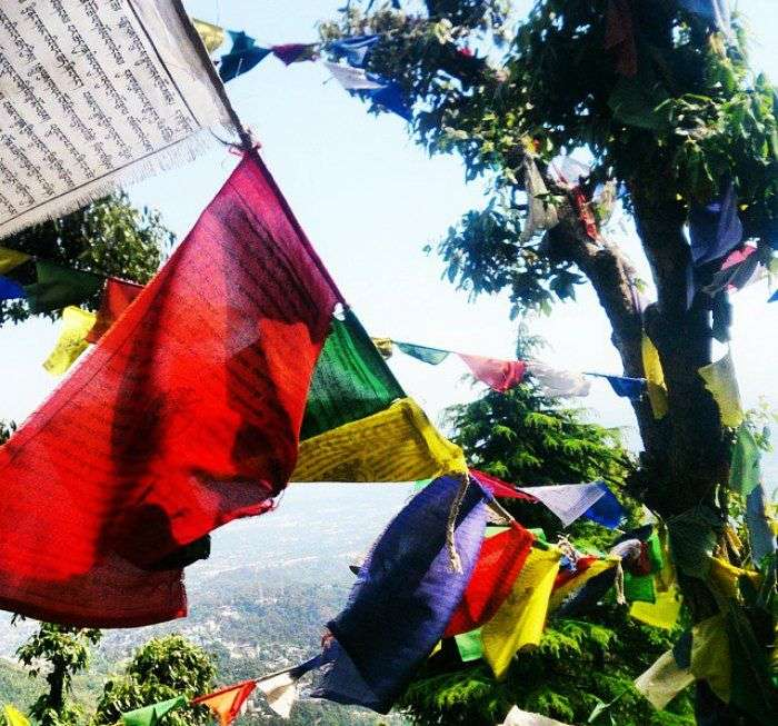 Positive vibes in Mcleodganj