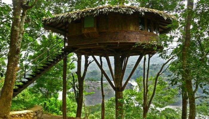 The Rainforest Resort offering bird's eye view of the Athirapally falls