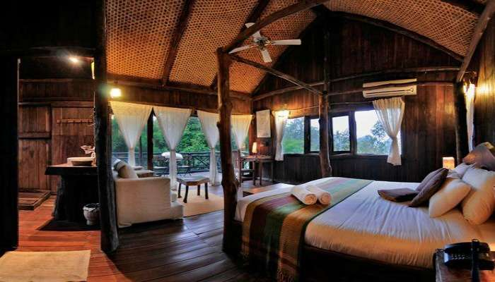 The Tree House Hideaway in Bandhavgarh is perfect for tiger spotting