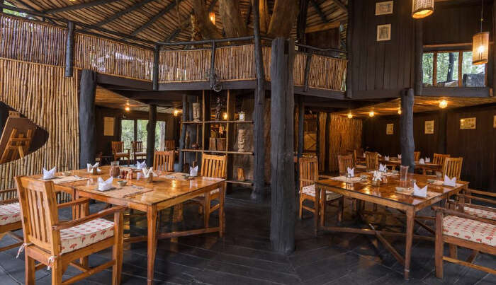 Tree House Hideaway Resort in Bandhavgarh