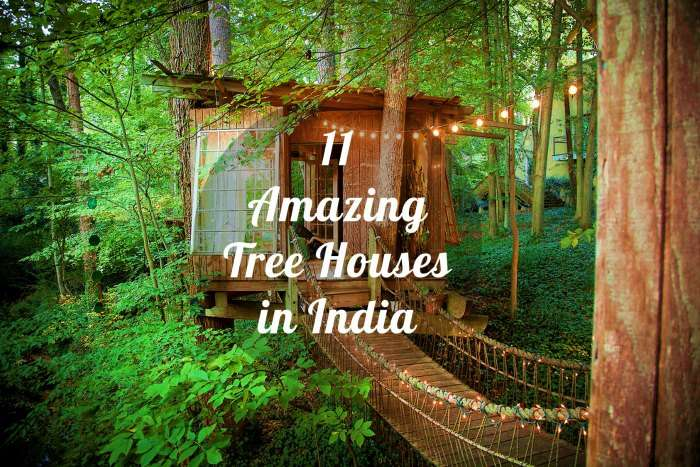 11 Amazing Tree Houses In India Treat For Your Younger Self