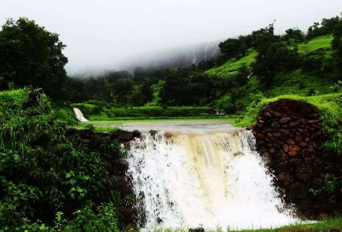 Bhandardara hill station in Maharashtra is one of the best summer vacation destinations for families