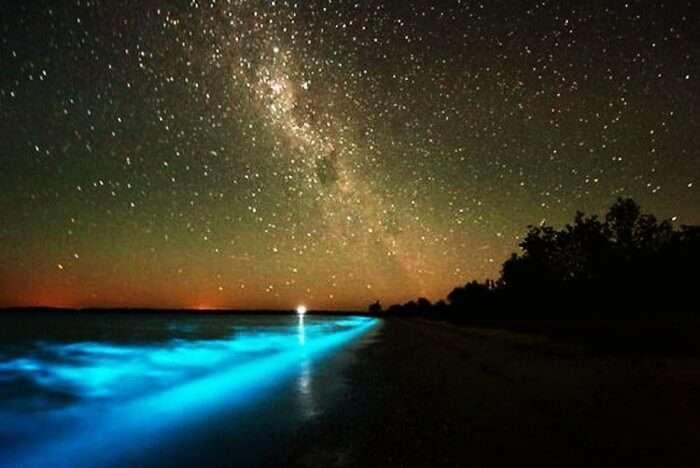Bioluminescent sea at night