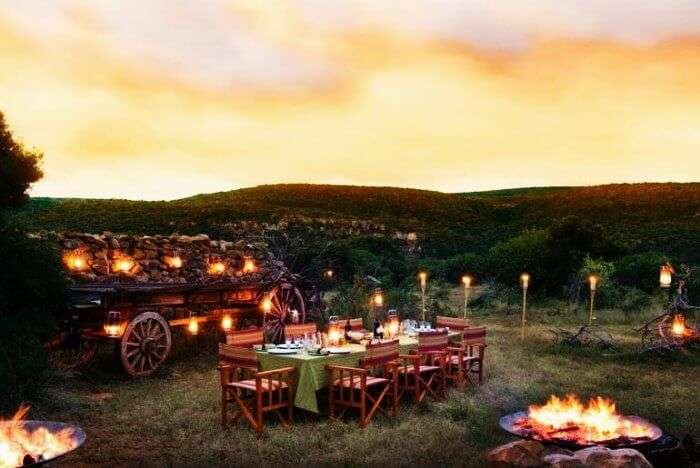 A romantic dinner in wilderness at Cape Winelands in South Africa