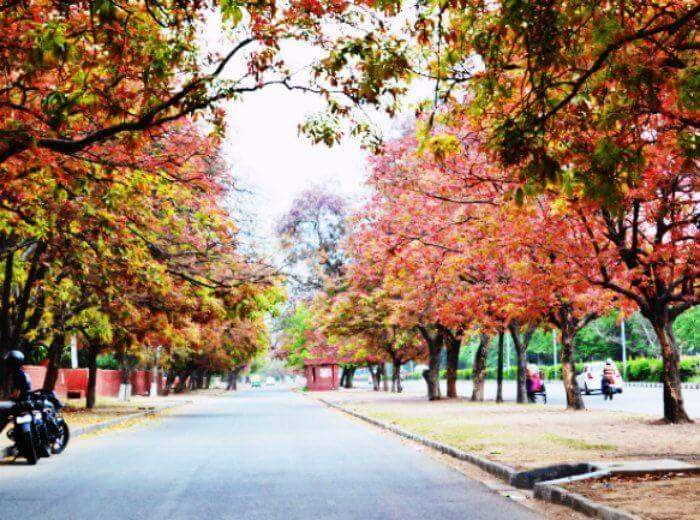 Chandigarh, the cleanest city in India