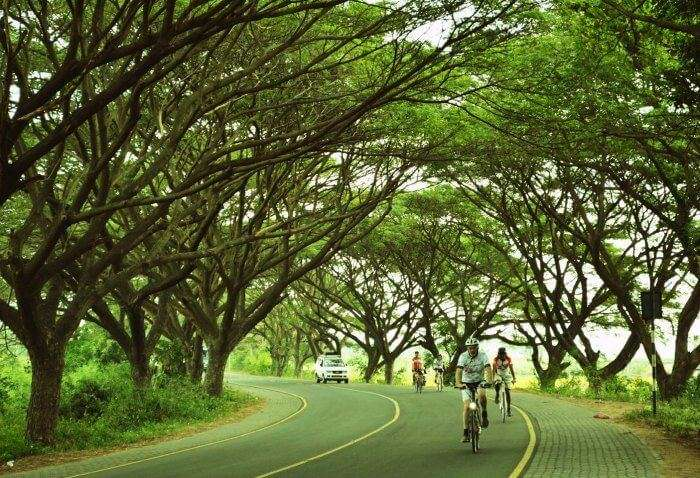 Cycle on the East Coast Road from Chennai to Pondicherry