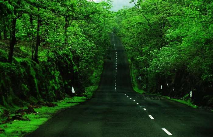 The breathtaking road to Malshej Ghat- One of the best places near Mumbai and Pune to visit in monsoon