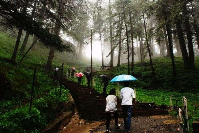 Travelers trekking upto the Jakhoo hills in Shimla