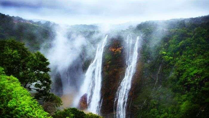 Jog falls come alive during monsoons and is one of the best places in India during rainy seasons