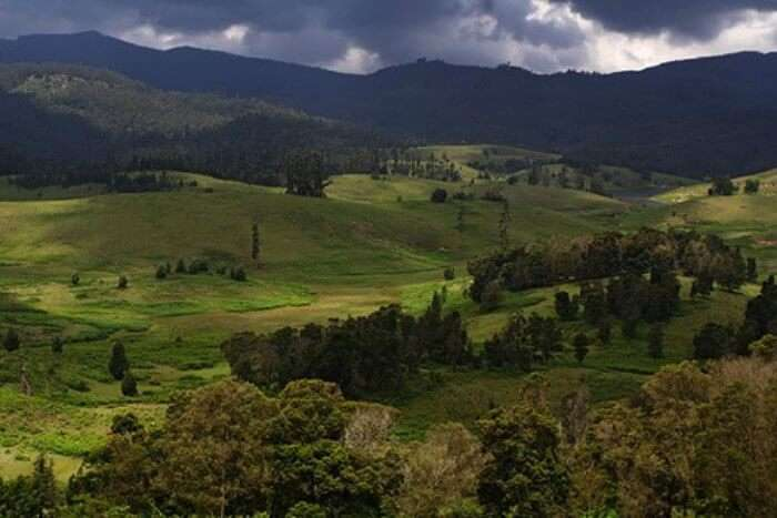 Kodaikanal is an amazing place to visit during monsoons in India