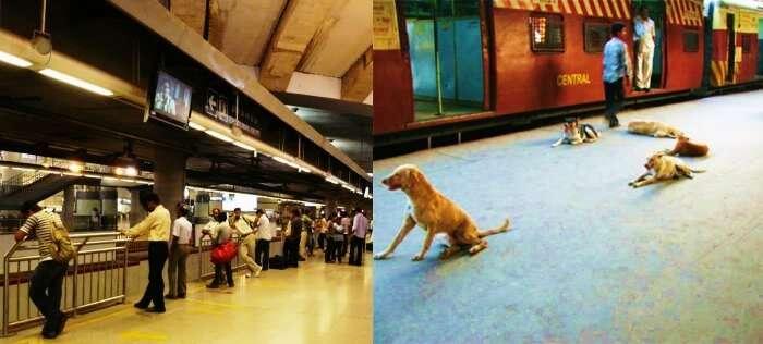 Metro Station vs Mumbai Local's Station