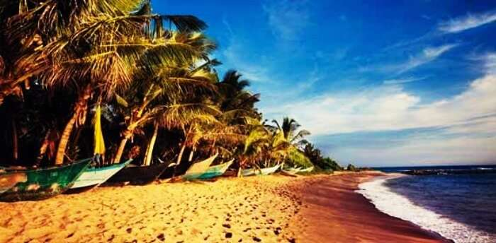 Mirissa is the best beach in Sri Lanka known for its pristine shores