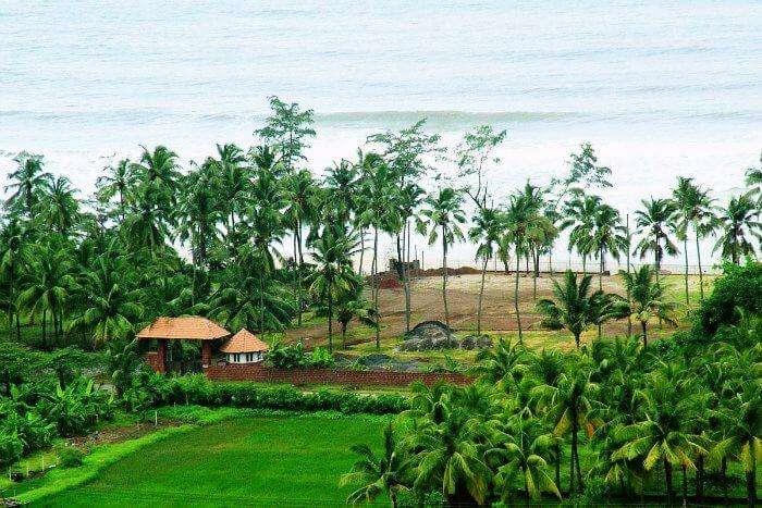 Lawns of Prakruti resort in Kashid overlooking the beach