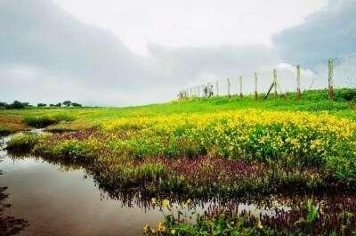 Satara near Pune