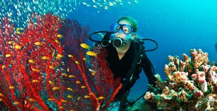 A diver scuba diving in Thailand
