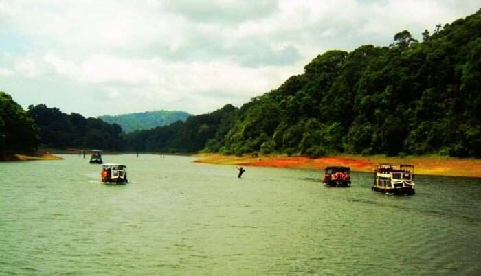 Thekkady is one of the most beautiful places to visit in Kerala in monsoons