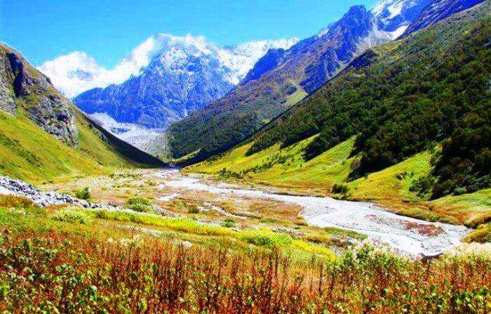 The beautiful Valley of flowers has to be on your list of places to visit in Uttarakhand