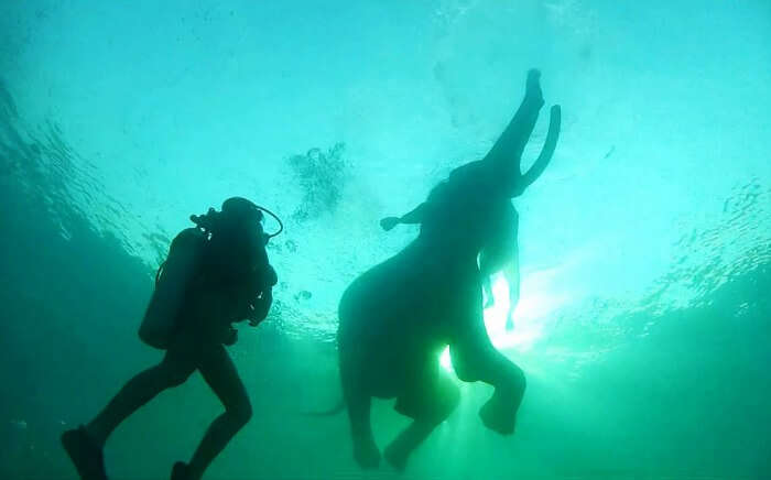 11 Thrilling Water Sports In Andaman: No Swimming Required!