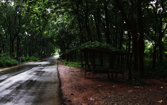 rain washed road in Malappuram