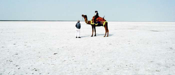 Lady on camel in the White desert