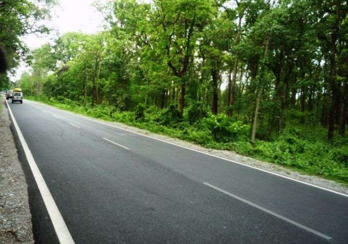 Darjeeling to Gangtok road