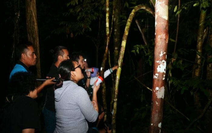Inquisitive tourists on the night walks in Periyar National Park in Kerala