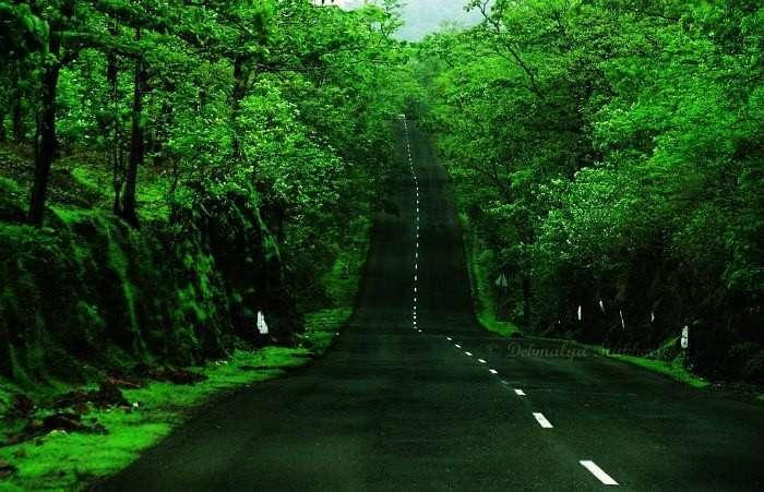 Road trip to Malshej Ghat