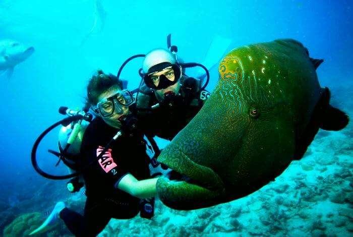Scuba-dive in Costa Rica