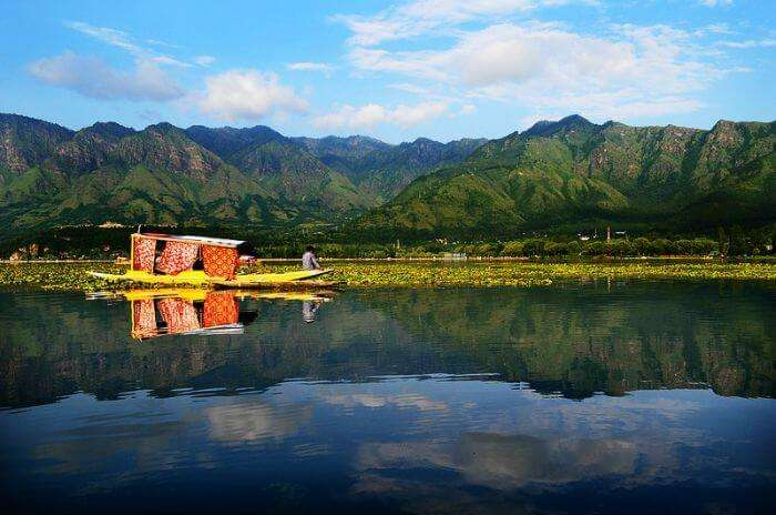 A splendid view of the Shikara, the city of Srinagar, and the reflection of hills at Dal Lake