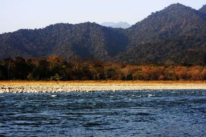 The manas river of Manas National park