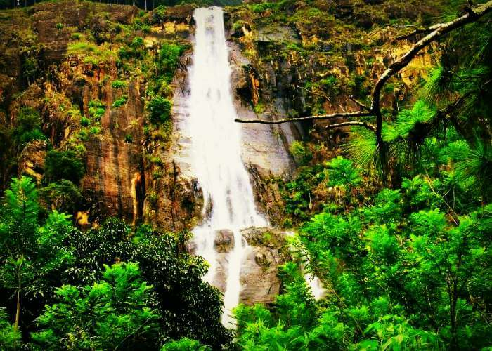 Bambarakanda Falls is the highest waterfall in Sri Lanka