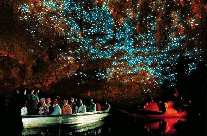 Bioluminescence at Waitomo in New Zealand