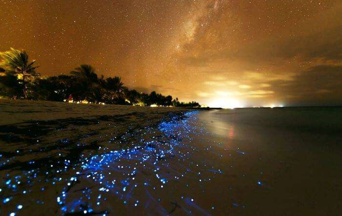 A spectacular starry night at the bioluminescent beach on Vaadhoo Island