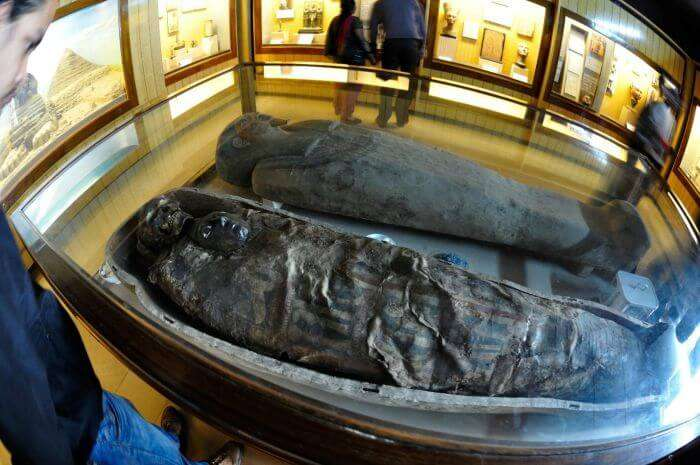 Egyptian mummies in Indian Museum – The largest museum in India