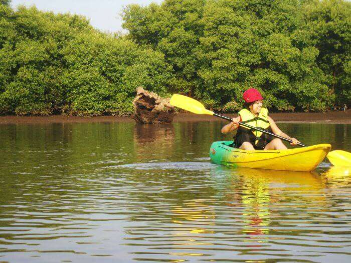 kayaking in the Goan Backwaters