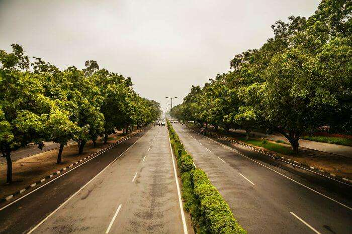 Greenery in the streets of Chandigarh