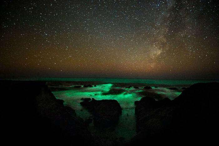 Green coloured bioluminesce witness in Ton Sai in Krabi - Thailand