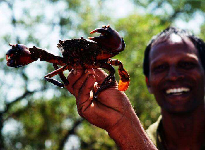 crab fishing in Goa