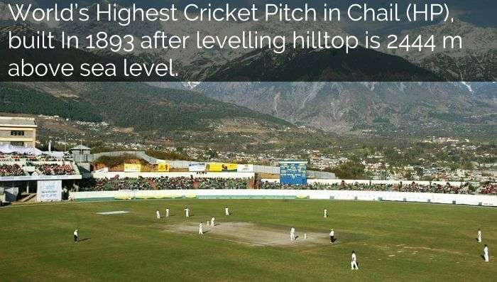 Worlds highest cricket pitch