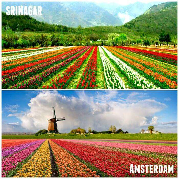 Srinagar and amstradam are look alike
