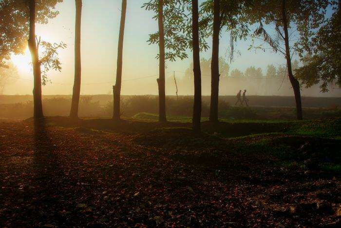 Two men walk in the early autumn morning mist along the banks of the river Jhelum
