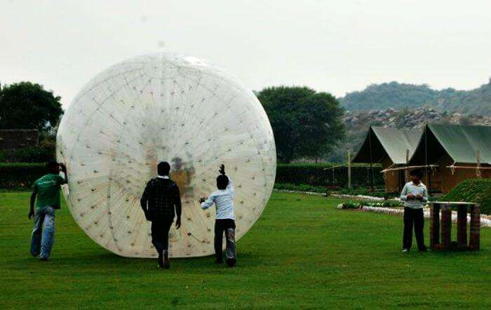zorbing at camp tikkling