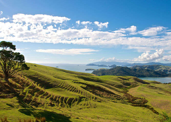 The expanse of Coromandel Peninsula is one of the must see places to see in New Zealand if you love the calm