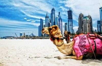 Dubai will ruin Indians for life