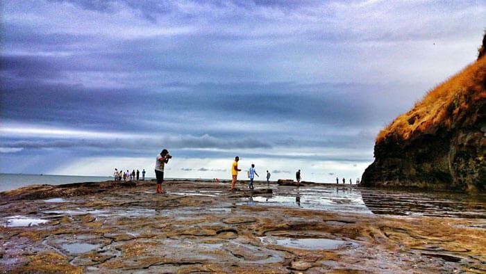 Turtle Festival at Harihareshwar Beach
